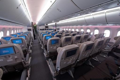 JAL-787-Y-Class-Back_s.jpeg